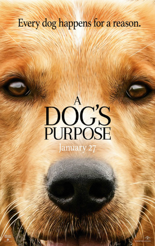 a-dogs-purpose-movie-review-2017