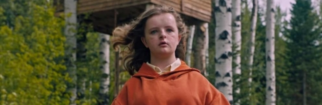 hereditary-2018-pigeon-head