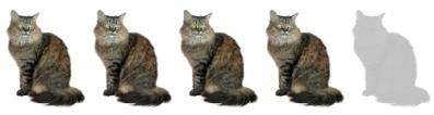 bohemian-rhapsody-freddie-mercury-cats