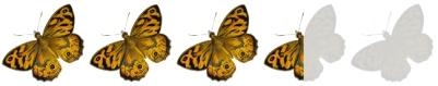 godzilla-king-monsters-2019-mothra-moth