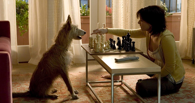 the-lake-house-sandra-bullock-jack-dog