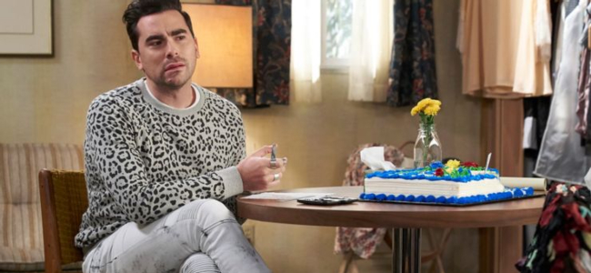 david-rose-best-outfits-leopard-print